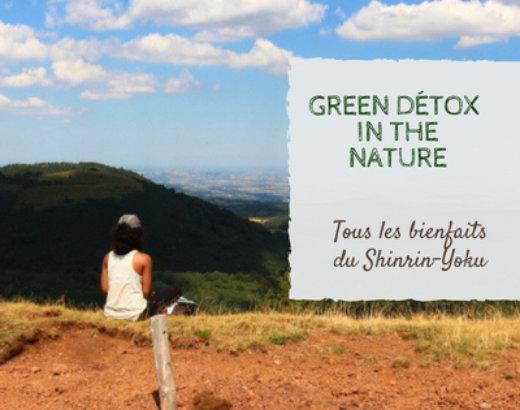 Detoxifier corps et esprit avec le Shinrin-Yoku: 5 bonnes raisons de le pratiquer