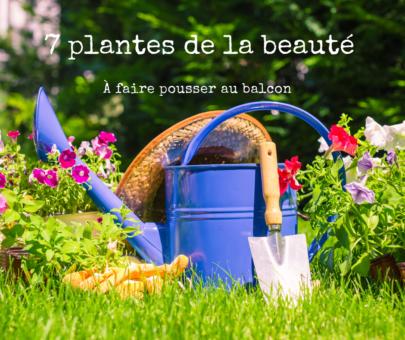 7 Plantes de la beauté à faire pousser au Balcon (ou ailleurs)