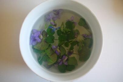 Lotion-infusion à la Violette odorante, réparatrice des peaux à imperfections
