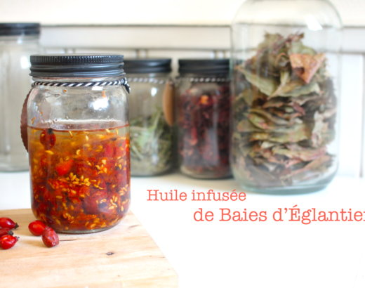 Huile infusée de Baies d'Églantier – RoseHips infused Oil