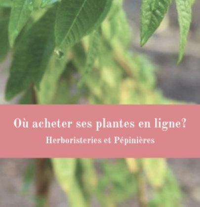 3 adresses pour acheter ses plantes en ligne