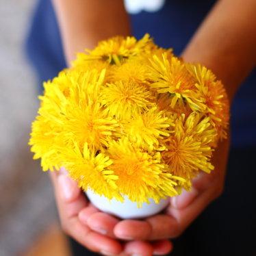 L'Art du Minimalisme: 4 raisons de le cultiver en beauté