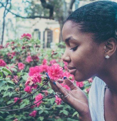 5 Plantes pour lutter contre la chute des cheveux