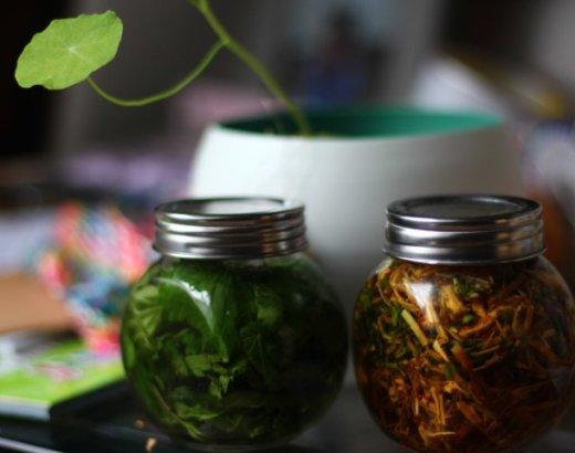 Teinture-mère de Plantes sauvages pour Lotion capillaire