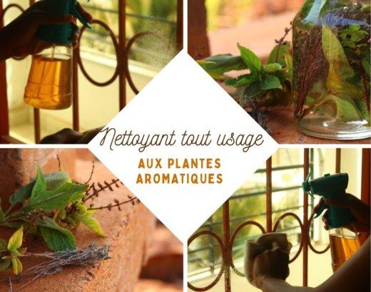 Nettoyant ménager écolo, aux herbes aromatiques